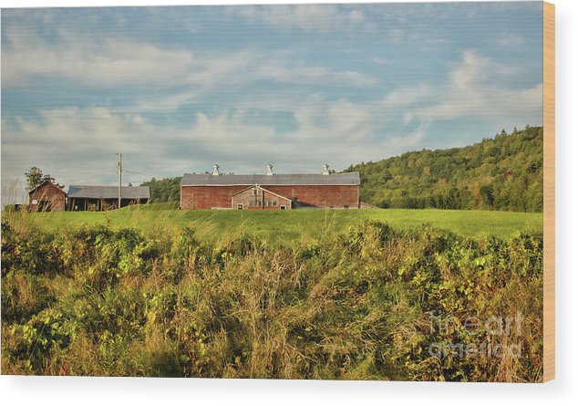 Old Barns Wood Print featuring the photograph The Red barn by Diana Nault