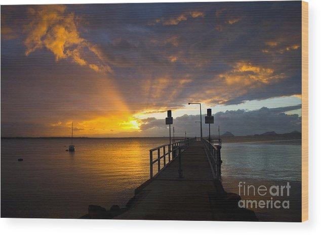 Sunrise Wood Print featuring the photograph Salamander Bay sunrise by Sheila Smart Fine Art Photography