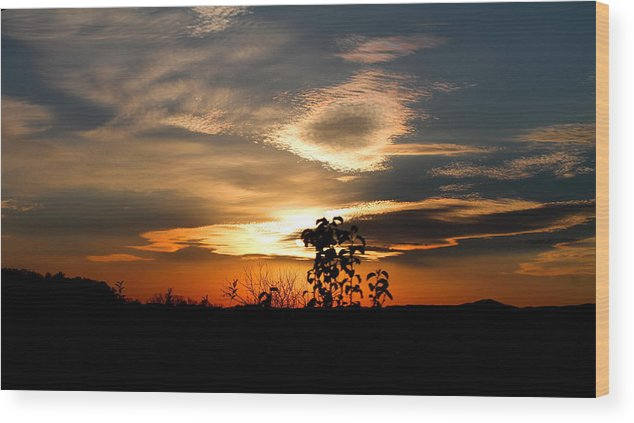 Sunset Wood Print featuring the photograph Simplistic Beauty by Candice Trimble