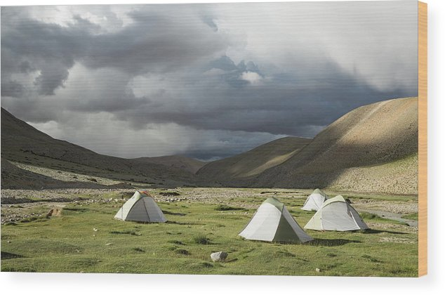 Tranquility Wood Print featuring the photograph Atmospheric Grassy Camping by Jamie Mcguinness - Project Himalaya
