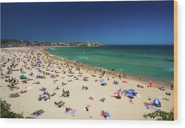 Water's Edge Wood Print featuring the photograph Bondi Beach, Sydney, Australia by Adam Jeffery Photography