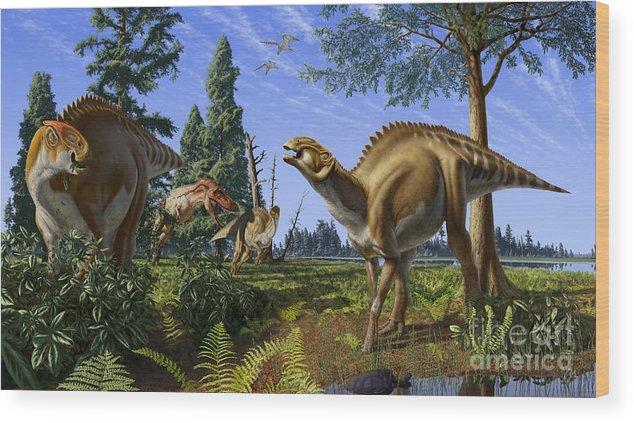 Dinosaur Wood Print featuring the digital art Brachylophosaurus canadensis by Julius Csotonyi