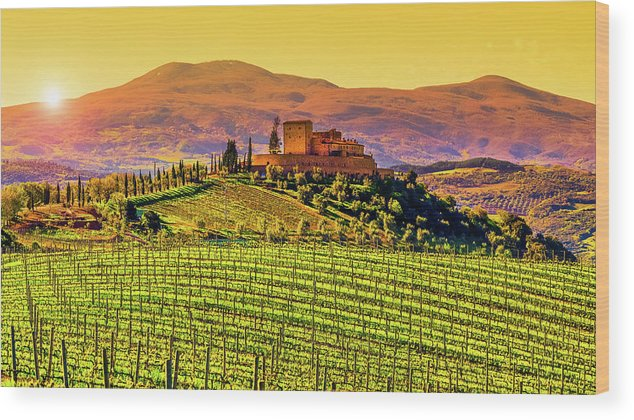 Scenics Wood Print featuring the photograph Vineyard In Tuscany by Deimagine