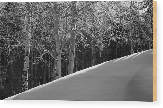 Colorado Wood Print featuring the photograph Aspencade by Skip Hunt