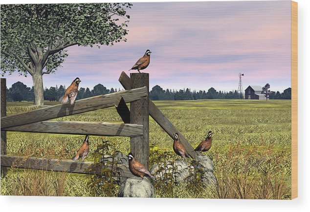 Bird Wood Print featuring the digital art Bobwhite Quail by Walter Colvin