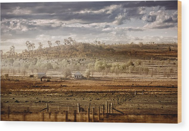 Landscapes Wood Print featuring the photograph Heartland by Holly Kempe