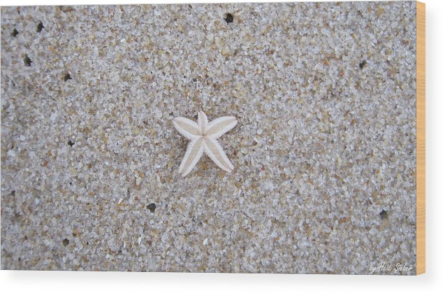 Sylt Wood Print featuring the photograph Small Star Fish by Heidi Sieber