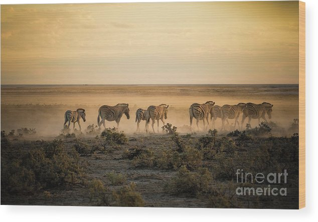 Dawn Wood Print featuring the photograph Namibia, Etosha National Park, Herd by Westend61
