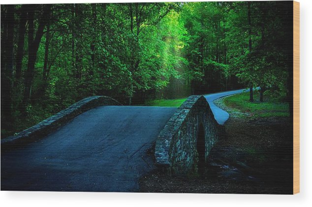 Bridge Wood Print featuring the photograph Over the Bridge and Through the Woods by Zayne Diamond Photographic