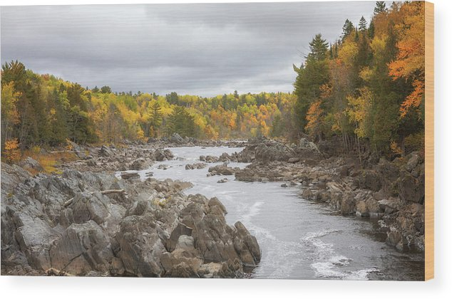 Autumn Wood Print featuring the photograph The St Louis River by Susan Rissi Tregoning