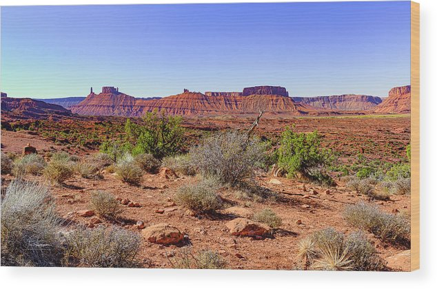 Moab 2020 Wood Print featuring the photograph Utah Landscape by Jim Thompson