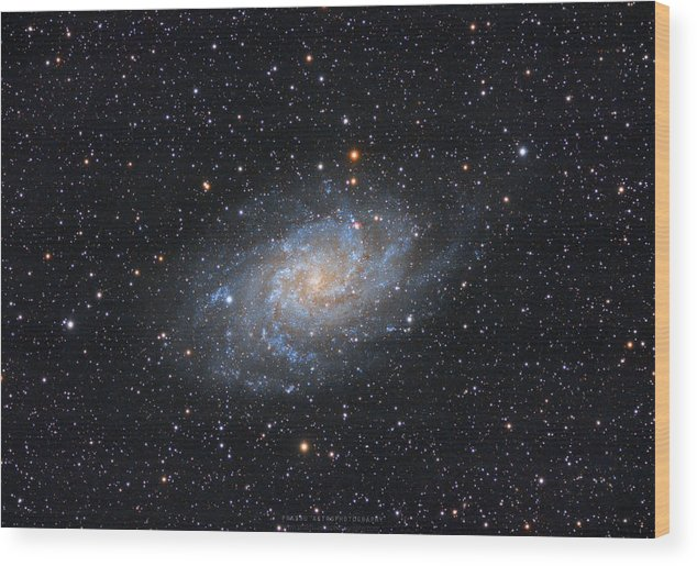 Galaxy Wood Print featuring the photograph Triangulum Galaxy by Prabhu Astrophotography