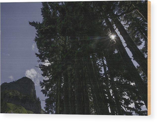 Mt. Baker-snoqualmie Wood Print featuring the photograph Starburst on Chain Lakes Trail by Paul Conrad