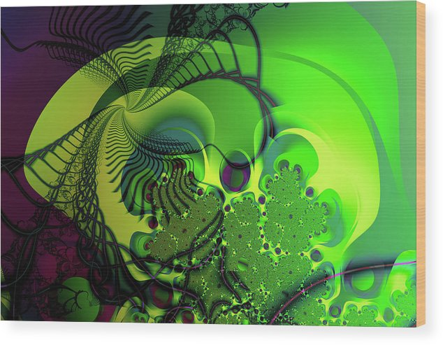 Fractal Wood Print featuring the digital art Amoeba by Frederic Durville