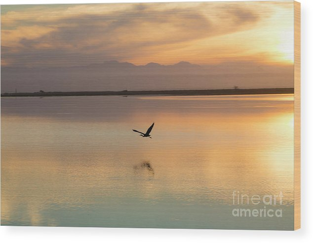 Heron Wood Print featuring the photograph Heron at sunset by Sheila Smart Fine Art Photography
