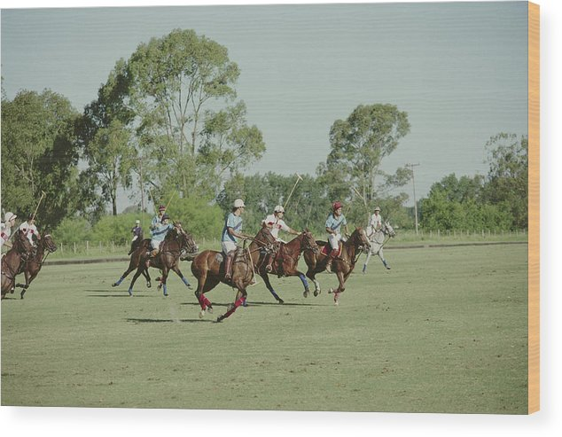 Horse Wood Print featuring the photograph Polo Match by Slim Aarons