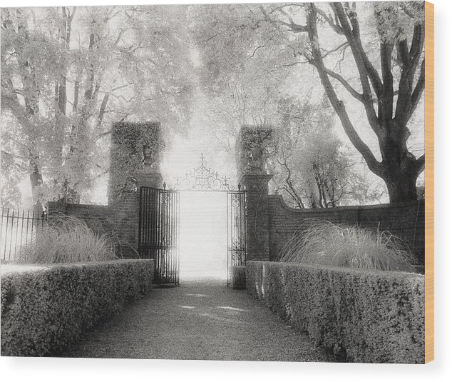Garden Wood Print featuring the photograph Garden Gate by Michael Hudson