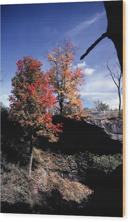 Autumn Color Wood Print featuring the photograph 10602-1 by Mike Davis