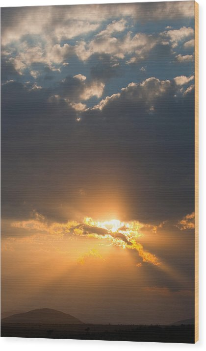 Masai Mara Wood Print featuring the photograph African Sunset by Paco Feria