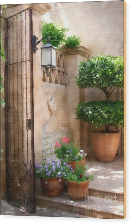Doorway Landscape Still Life Painting Wood Print featuring the painting Tranquil Oasis by Carolyn Staut