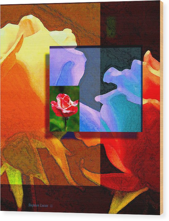 Modern Wood Print featuring the digital art Backlit Roses by Stephen Lucas