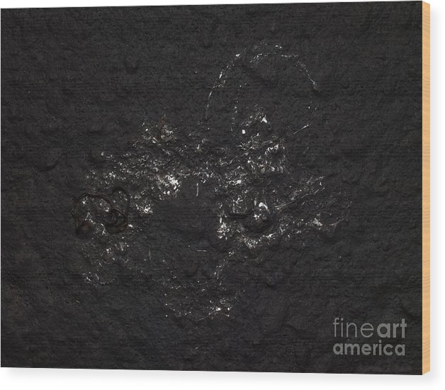 Bird Dropping Wood Print featuring the photograph Bird Dropping by Warren Sarle