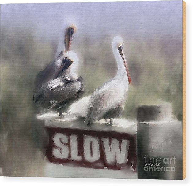 Seashore Birds Pelicans Tropical Humor Wood Print featuring the painting Easily Follows Directions... by Carolyn Staut