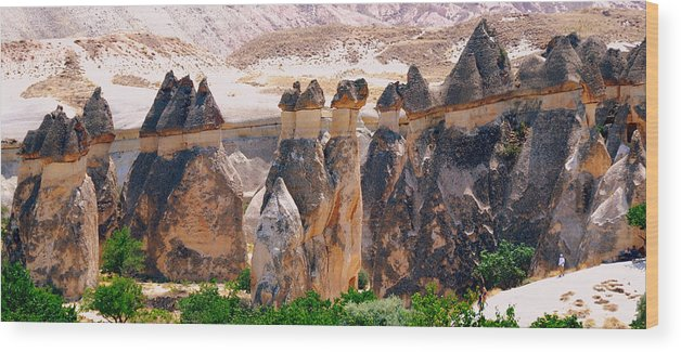 Landscape Wood Print featuring the photograph Fairy Chimney Panorama by Apurva Madia