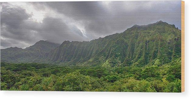 Hawaii Wood Print featuring the photograph Koolau Waterfalls by Dan McManus
