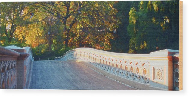Landscape Wood Print featuring the photograph Enter by John-Marc Grob