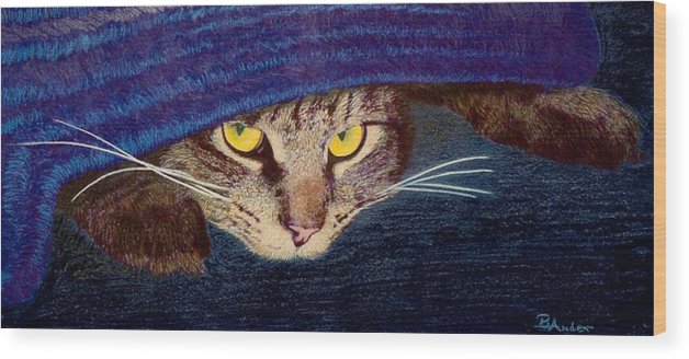 Maine Coon Cat Wood Print featuring the drawing Hide And Seek by Brent Ander