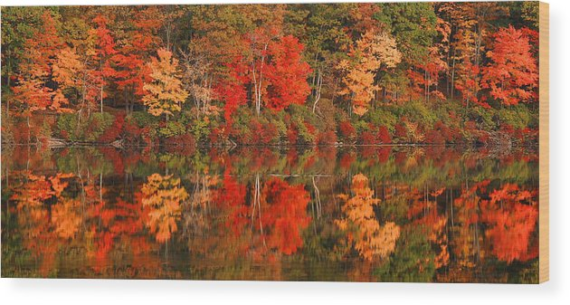 Autumn Wood Print featuring the photograph Autumn Reflections by Stephen Vecchiotti
