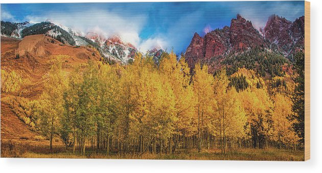 Colorado Wood Print featuring the photograph Aspen Grove by Andrew Soundarajan