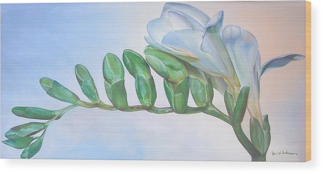 Floral Painting Wood Print featuring the painting Freesia by Muriel Dolemieux
