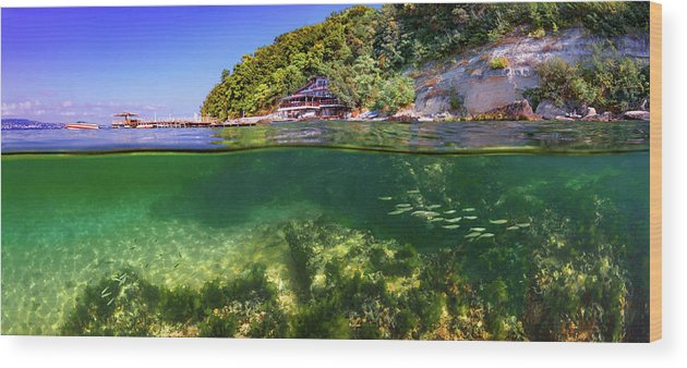 Beautiful Wood Print featuring the photograph Split Level Reef And Trees With Pier by Todor Dimitrov