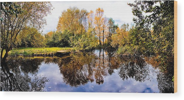 View Wood Print featuring the photograph Autumn Panorama by Nataliya Pergaeva