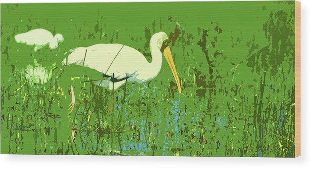 Yellow-billed Stork Wood Print featuring the digital art Storks by Ronald Jansen