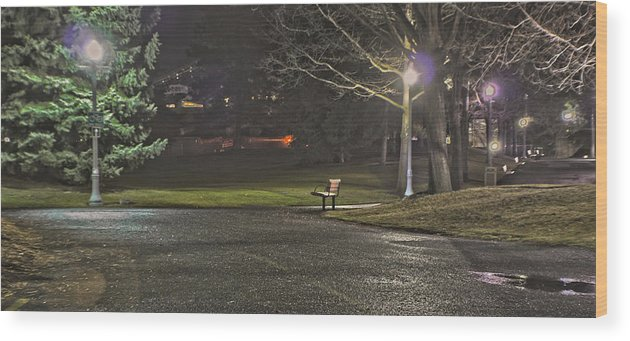 Wood Print featuring the photograph Lonely Walkway by Dan Quam