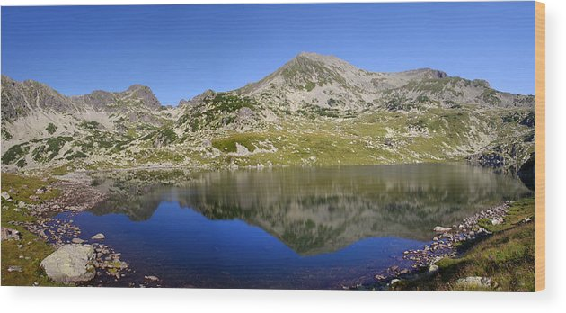 Alpine Wood Print featuring the photograph Mountain And Lake by Ioan Panaite