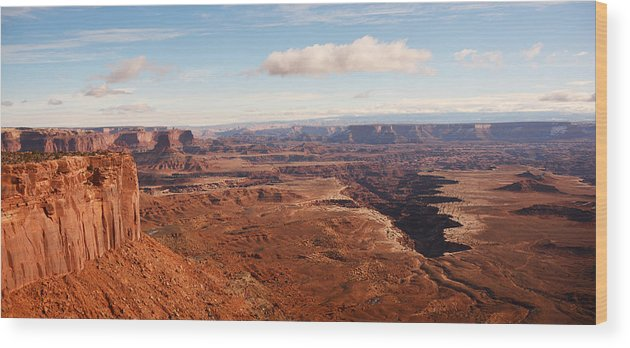 Needles District Wood Print featuring the photograph Canyonlands by Thomas and Thomas Photography