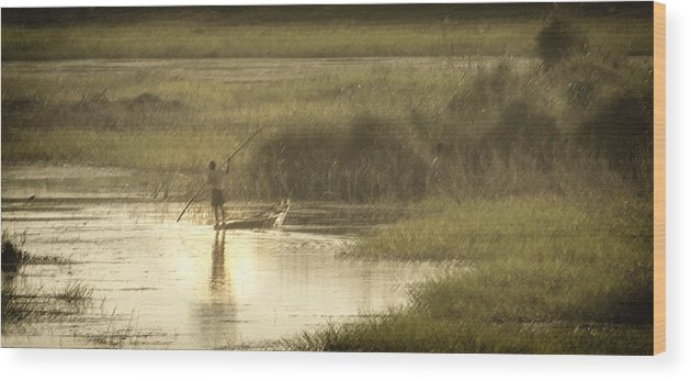 Pole Wood Print featuring the photograph Young Man On The Nile by Claudio Bacinello
