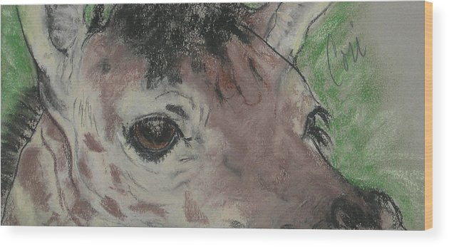 Giraffe Wood Print featuring the drawing Eyes On You by Cori Solomon