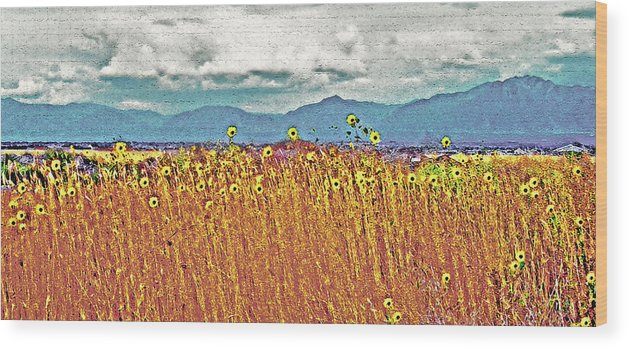 Fields Wood Print featuring the photograph Sunflower Field 1 by Steve Ohlsen