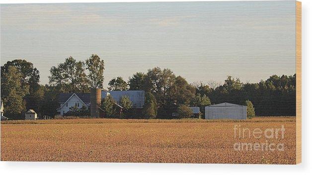 Indiana Wood Print featuring the photograph Indiana Farmland by Scott D Van Osdol