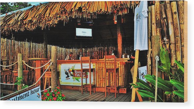 Landscape Wood Print featuring the photograph Roatan Life by Gianni Bussu