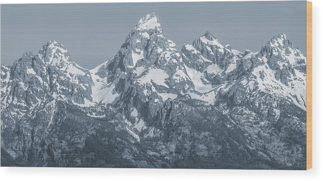 Portrait Of The Tetons Wood Print featuring the photograph Portrait Of The Tetons by Dan Sproul