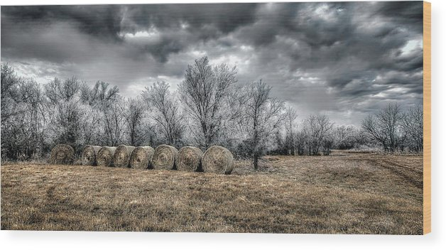 Winter On Canvas Wood Print featuring the photograph The Cold by Garett Gabriel
