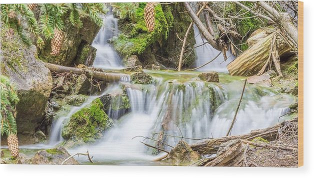 Waterfall Wood Print featuring the photograph Waterfall In The Woods by Livia Pavelescu