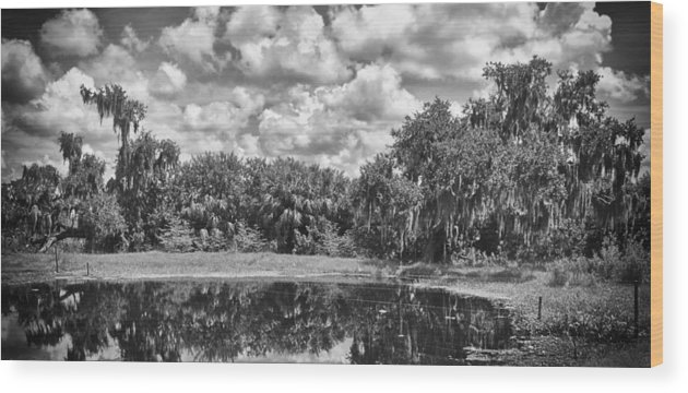 Florida Wood Print featuring the photograph Country Lake 2 by Skip Nall