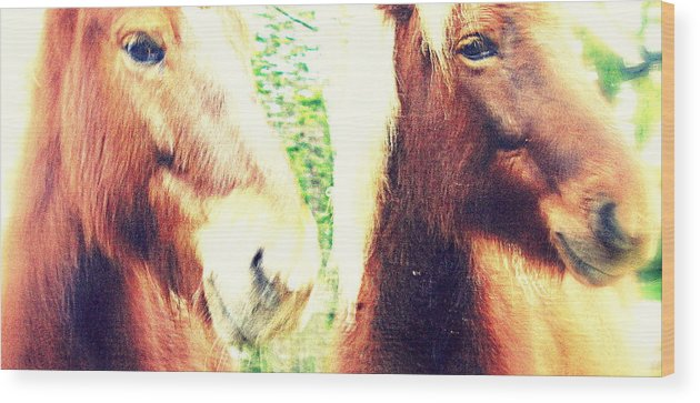 Dance Wood Print featuring the photograph We Look You In The Eye And Wonder Who You Are by Hilde Widerberg